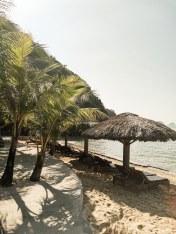 monkey-island-resort-2