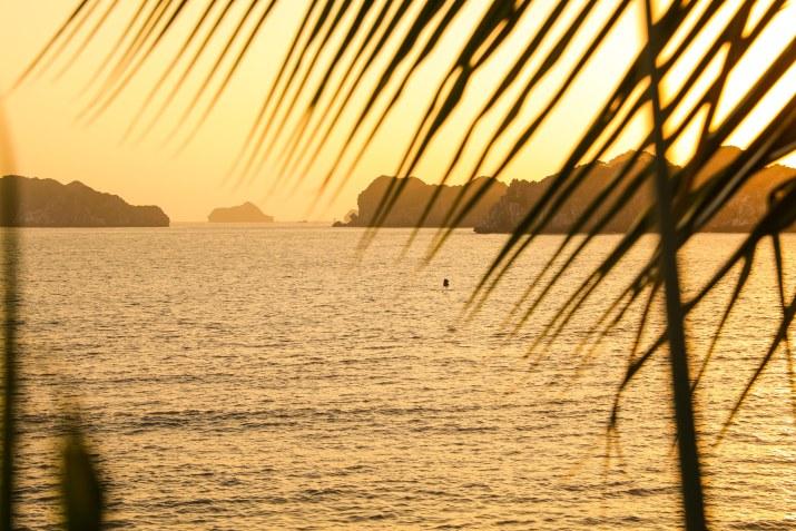 monkey-island-resort-7