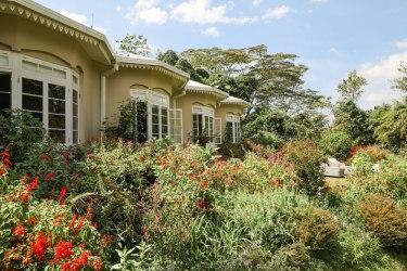 Ceylon-Tea-Trails-7
