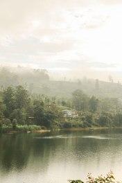 Ceylon-Tea-Trails